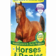 verm-x-polvere-cavalli